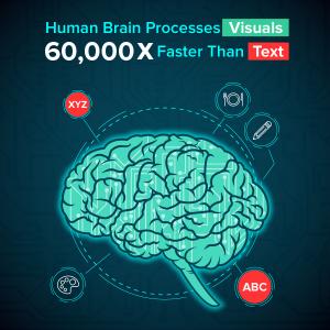 Brain-processes-visuals-faster-studio52